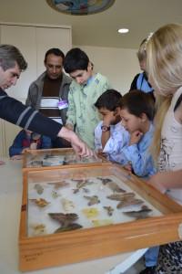 Pacientes conferem insetos que são utilizados no controle de pragas.