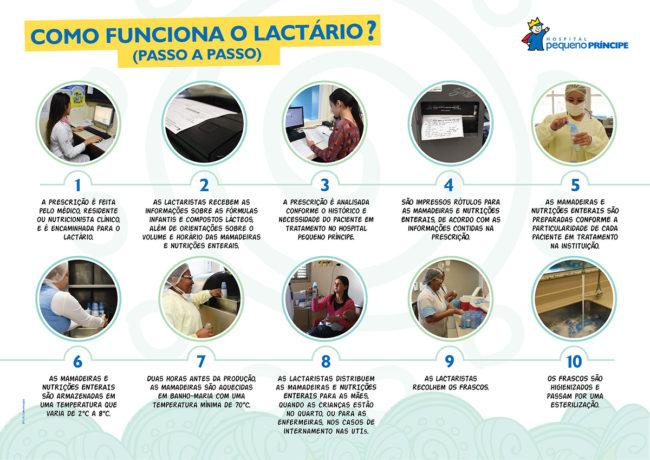 apg_infografico_Lactario