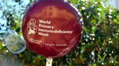 Semana Mundial das Imunodeficiências Primárias: diagnóstico precoce pode salvar vidas