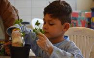 Aprendizado sobre jardinagem muda a rotina de crianças e adolescentes do Hospital Pequeno Príncipe