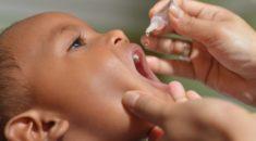 Tudo o que você precisa saber sobre a vacinação